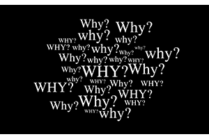 Why? Conference