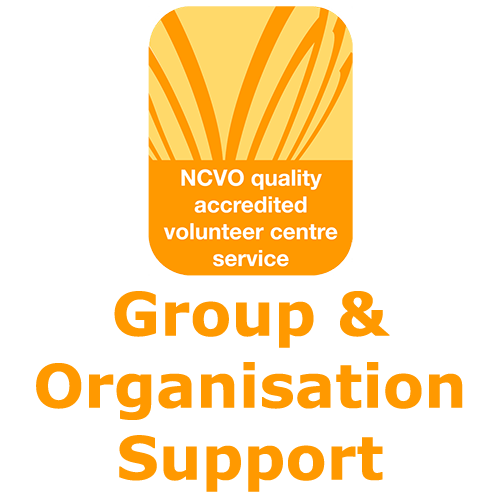 Voluntary Organisation Support